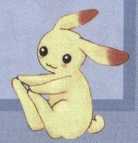 Momiji rabbit