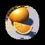 Icon Citrus