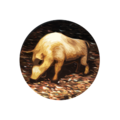 Icon Truffles.png