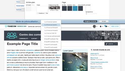 FR Theme designer - history