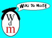Miss wdm (béret)
