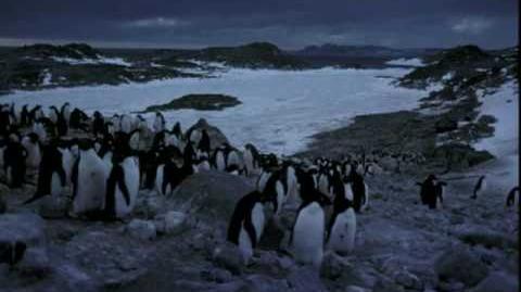 Long Live Antarctica