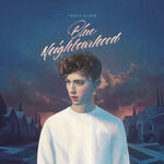 Troye-sivan-bad-neighbourhood