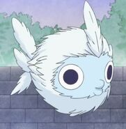 Executive tadpole anime