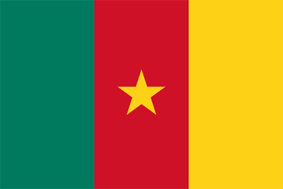 File:Flag of Cameroon.png