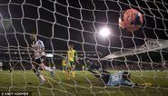 Fulham 3-0 Norwich (Dejagah goal)