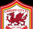 Fulham XI 3-3 Cardiff City XI (2014 Friendly)