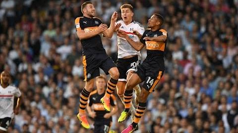 Fulham 1-0 Newcastle United