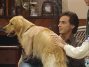 Full House S03E07 Screenshot 005