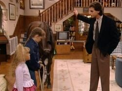 Full House 204 D.J.'s Very First Horse 018 0001