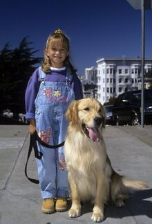 Comet | Full House | FANDOM powered by Wikia