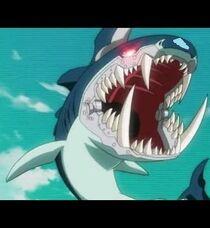 Sharkning