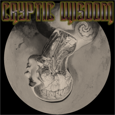 Cryptic wisdom cover art