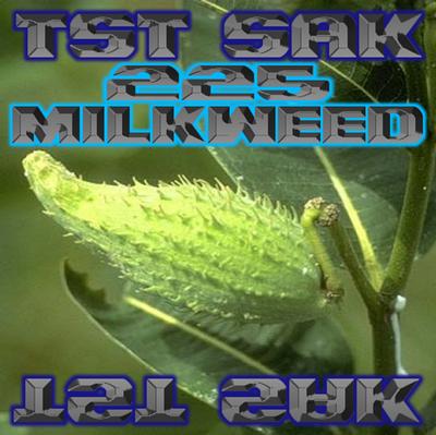 225 Milkweed art