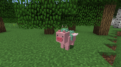 Pegasus pig