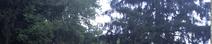 Screen Shot 2020-06-28 at 8.00.22 PM