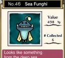 Sea Funghi