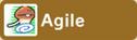 Skill Agile FD