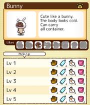 06 Bunny