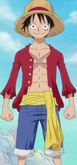 250px-Luffy Anime Post Timeskip Infobox