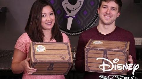 Disney Treasures Festival of Friends Unboxing!