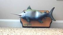 Singing swordfish