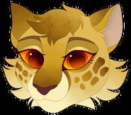 LeopardpawhsBABY