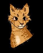 Leopardpaw headshot redesign