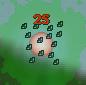 Swarm Action