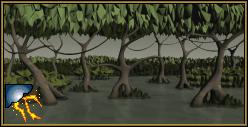 Pântano Sombrio