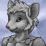 Rodent Portrait M