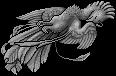 Mythical Ferian Phoenix Flying 20