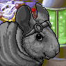 Evil Chinchilla Overlord Portrait M