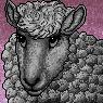 Woolie Portrait F