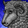 Woolie Portrait M
