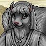 Noble Squirrel Portrait U