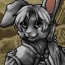 Noble Lapine Portrait U
