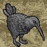 Kiwi Portrait U