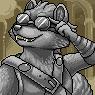 Raccoon Portrait U