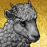 Woolie Portrait U