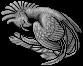 Mythical Ferian Phoenix Flying 19