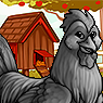 Clucken Portrait U