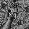 Lovebird Portrait U