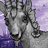 Goaten Portrait M
