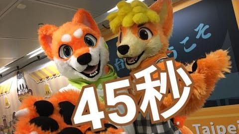 【橘醬&橙色】 45秒 【踊ってみた 】