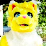 砂糖猫狐 さとう