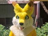 黃狐狸 蒼瞳