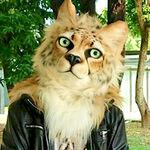 NuggetCat 貓雞塊