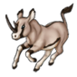 3264-oryx-abada