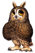 Owl long eared